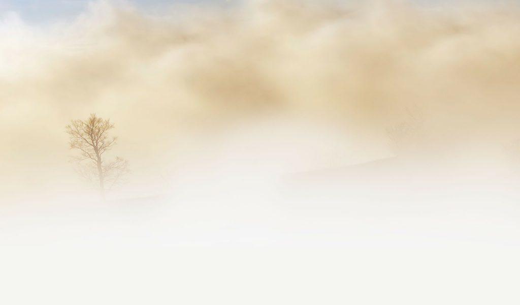 white beige fog