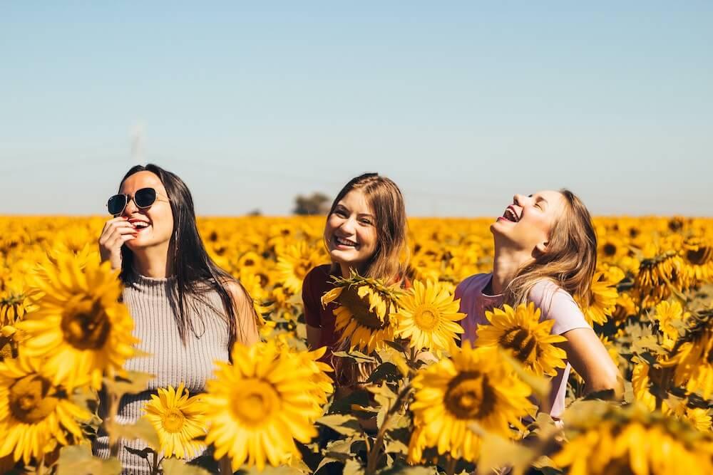 sunflower-field-friends