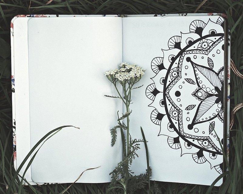 sketchook mandala flower